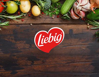 Liebig Soup website