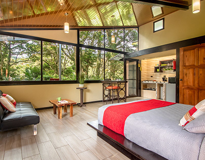 Bird Paradise Monteverde