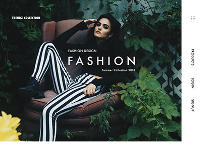 Fashion Collection Interface for Trendz Collection