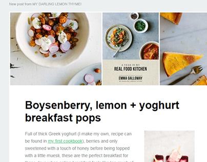Lemon Newsletter Email Template Design