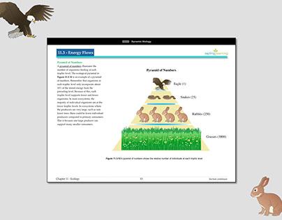 Illustration - eBooks