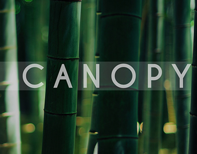 Canopy - Bamboo Craft Workshop