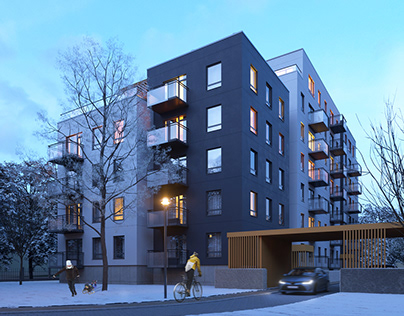 Winter mood residential project