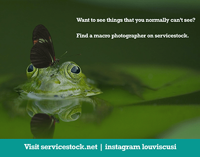 Find a macro Photographer on ServiceStock