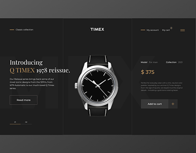 TIMEX (concept)