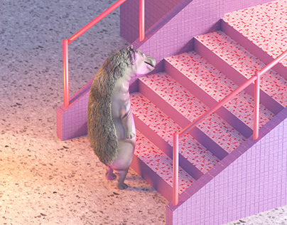 Hippo Quarantineworkout - jump box