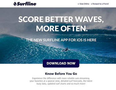 Surfline Email and Digital Banner Design