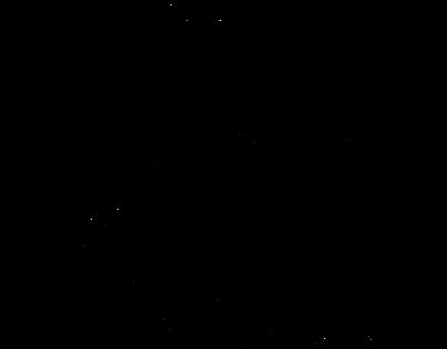 Wiejski Skład - Logo for online meat shop