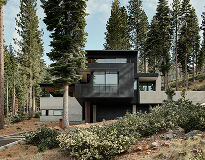 Lookout House/ Faulkner Architects
