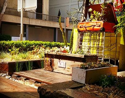 Circa Espresso Garden Design