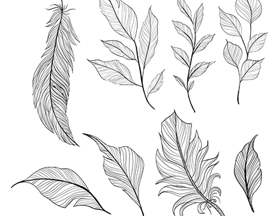 Elegant hand drawn feathers pack (free download)
