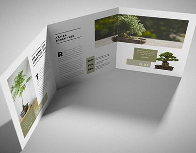 Square-Tri-Fold-Brochure