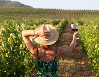 Sunny Winery of Azerbaijan