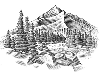 Bank of the Cascades Spot Illustrations