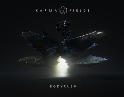 Karma Fields - Visuals