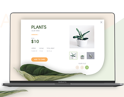 Plants Single Product Page