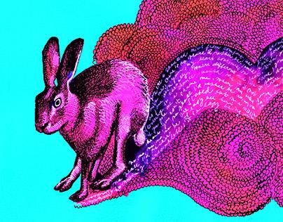 Rabbit Vinyl Cover