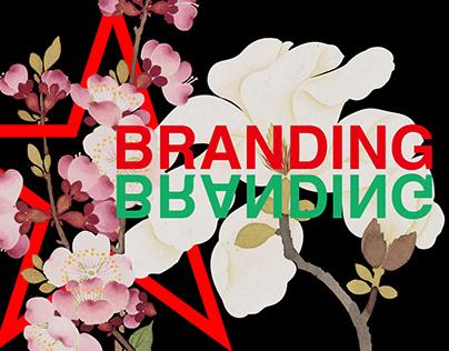喜鹊包装|logo合集