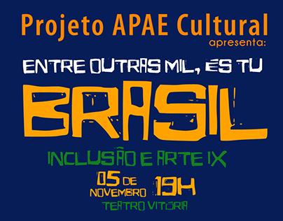 APAE Cultural 2015