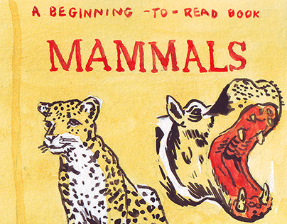 Vintage Children's Book Covers