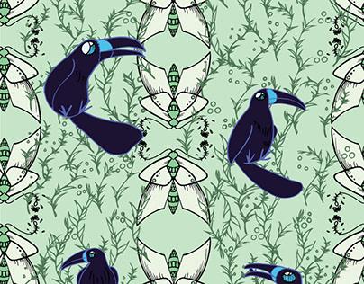 Dusk toucans