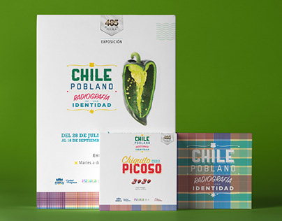 Chile Poblano: An Identity's Radiography | Exhibition