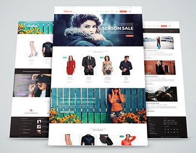 Store E-commerce | Wordpress Responsive Website