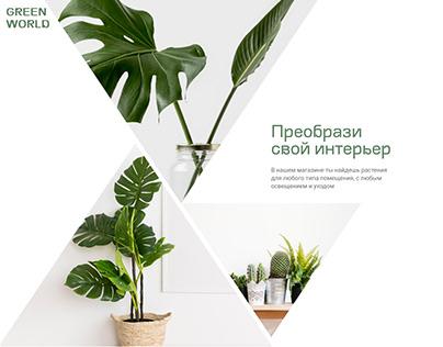 Интернет-магазин комнатных растений