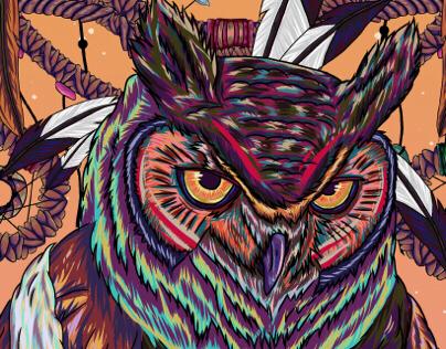 Owlcatcher