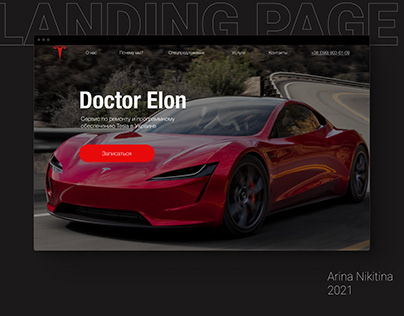 """Landing Page for the Tesla service """"Doctor Elon""""."""