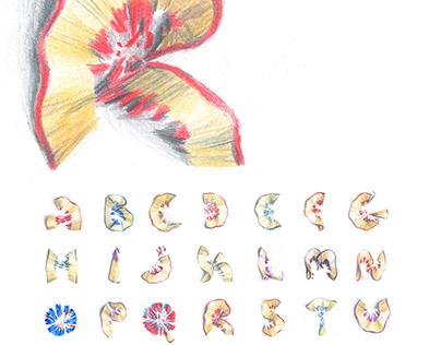 INSPIRATION / Drawn typeface