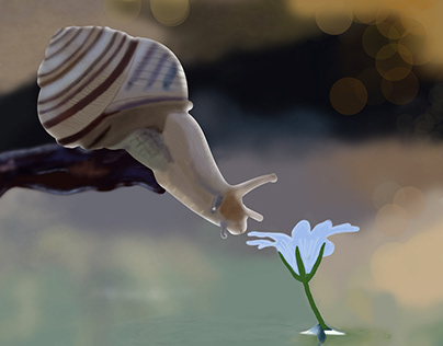 Snail Digital Painting