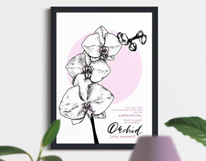 White Orchid on pink. Find and save your authenticity.