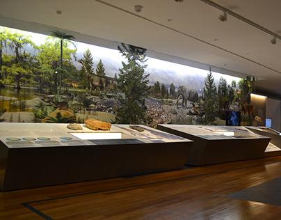 Museu de Leiria