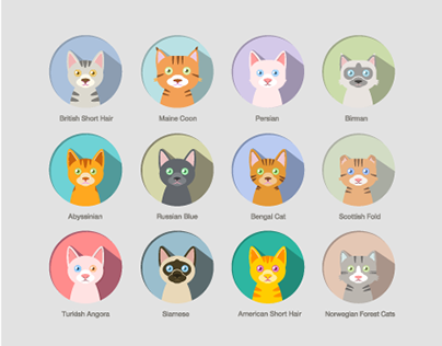 Different cats (Vector work)