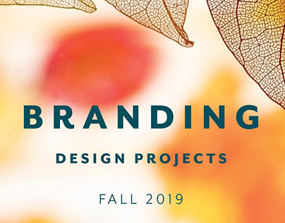 Branding Design Projects Fall 2019