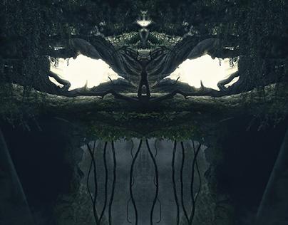 The Dark Forest II