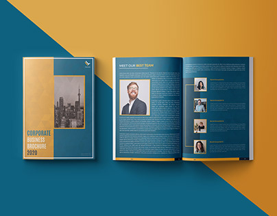 """CORPORATE BROCHURE - """" FALCONFLY """""""
