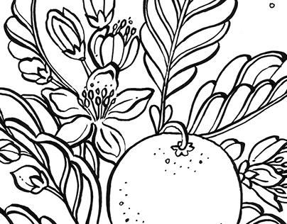 Botanical Coloring Book Pages