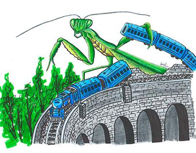 Praying Mantis vs Train