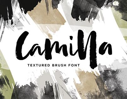 Camilla - Textured Brush Font