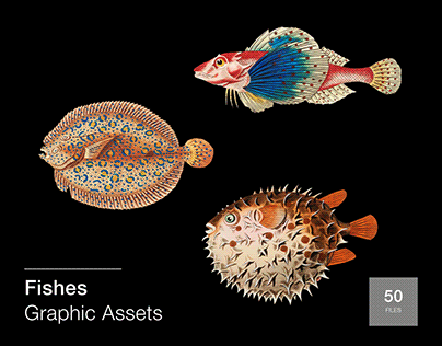 Fishes: 50 Graphic Assets