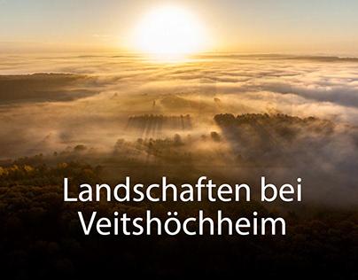 Nebellandschaften bei Veitshöchheim
