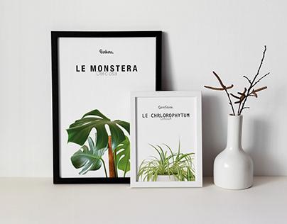 Affiche tes plantes ! | Fictif