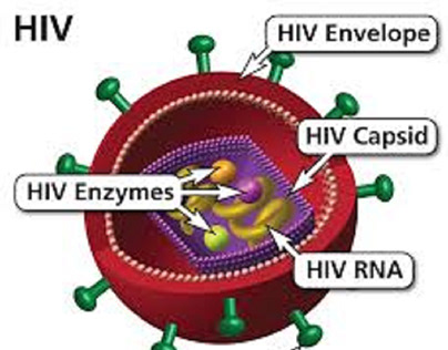 HIV : Causes and symptoms ……