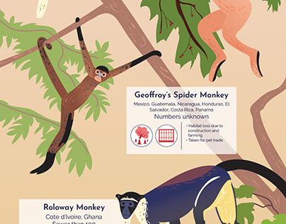 Primates in Peril - Poster