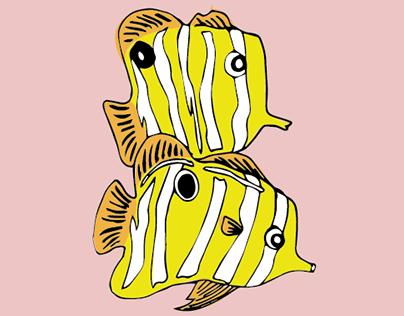 B for Boxfish