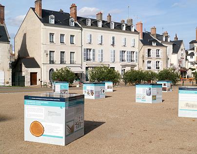 Château Royal de Blois | Culture et tourisme