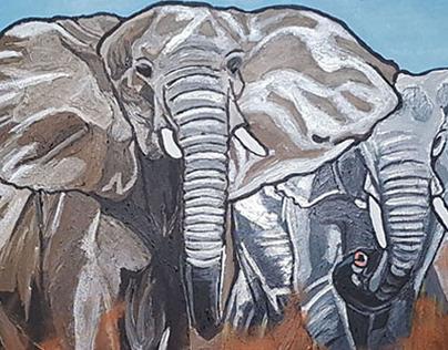 Soca in the Serengeti