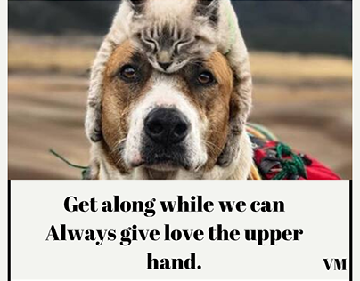 Get along while we can Always give love the upper hand